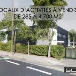 Vente Local d'activités Roissy-en-France (95700)