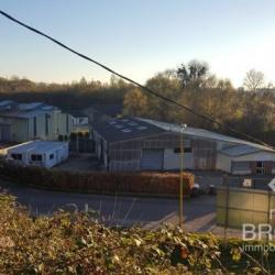 Vente Local d'activités Lillebonne 930 m²
