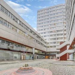 Location Bureau Lyon 3ème 95 m²