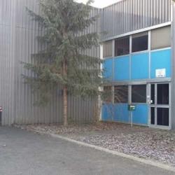 Location Local d'activités Torcy 1998 m²
