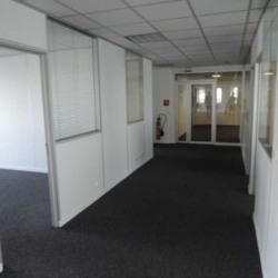 Location Bureau Ivry-sur-Seine 560 m²