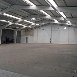 Location Local d'activités Seclin 620 m²