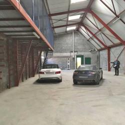 Location Local d'activités Tourcoing 536 m²