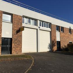 Vente Local d'activités Lisses 641 m²