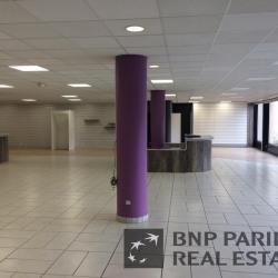 Location Local d'activités Saint-Martin-le-Vinoux 538 m²