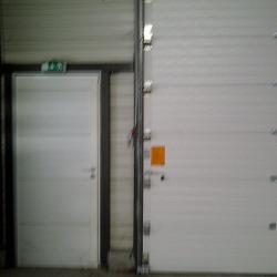 Location Local d'activités Tournefeuille 275 m²