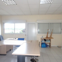 Location Local commercial Fonsorbes 55 m²