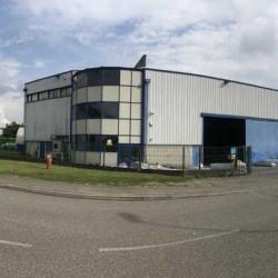 Vente Local d'activités Saint-Bonnet-de-Mure 1300 m²