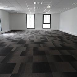 Location Bureau Auzeville-Tolosane 209,81 m²