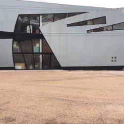 Vente Entrepôt Villeurbanne 628 m²
