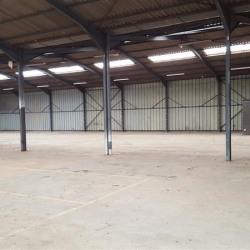 Location Local d'activités La Mézière 750 m²
