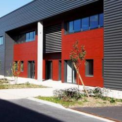 Location Local d'activités Gonesse 5085 m²