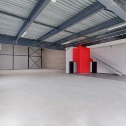 Vente Local d'activités Chanteloup-les-Vignes 5882 m²