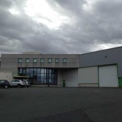 Vente Local d'activités Jassans-Riottier 7324 m²