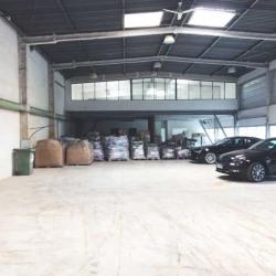 Location Local d'activités Argenteuil 1079 m²