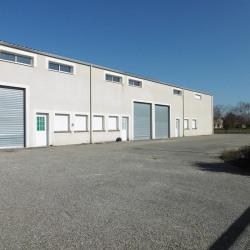 Location Local d'activités Montech 220 m²