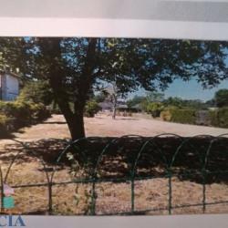 Vente Terrain La Marolle-en-Sologne 0 m²