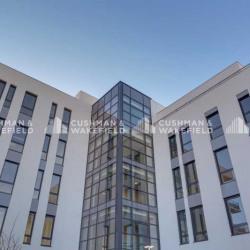 Location Bureau Marseille 14ème 245 m²