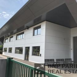 Vente Local d'activités Mudaison 1695 m²
