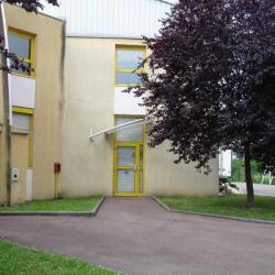 Location Local d'activités Vaulx-en-Velin 235 m²
