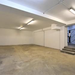 Location Entrepôt Arcueil 95 m²
