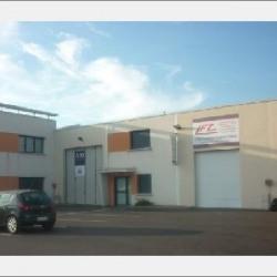 Location Local d'activités Meyzieu 368 m²