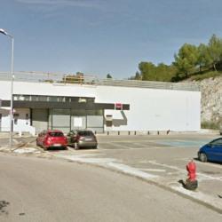 Location Local commercial Villeneuve-lès-Avignon 1300 m²