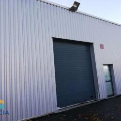 Vente Entrepôt Noyal-Châtillon-sur-Seiche 215 m²