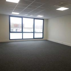 Vente Bureau Serris 53 m²