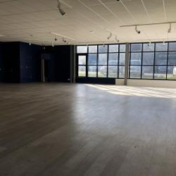 Location Local d'activités Rennes 320 m²