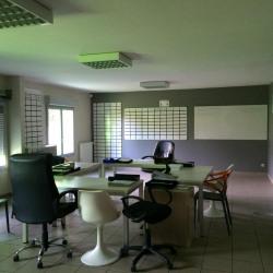 Vente Local d'activités Ballan-Miré 445 m²