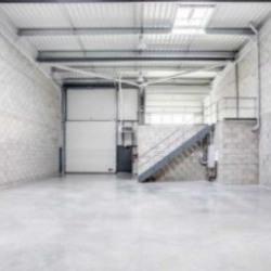 Location Local d'activités Vénissieux 1020 m²