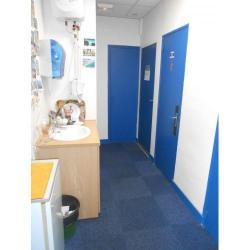 Location Bureau Limoges 40 m²