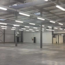 Location Local d'activités Mudaison 1590 m²