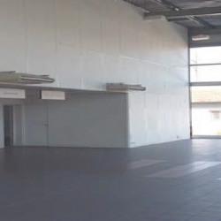 Location Local d'activités Bayonne 680 m²