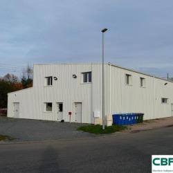 Location Local d'activités Condat-sur-Vienne 170 m²