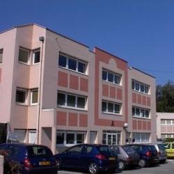 Location Bureau Sassenage (38360)