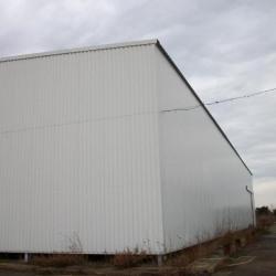 Vente Entrepôt Saint-Gilles 1300 m²