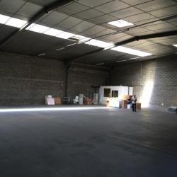 Location Local d'activités Saint-Égrève 640 m²