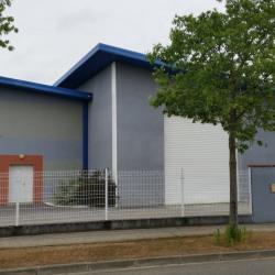 Location Local d'activités Colomiers 505 m²