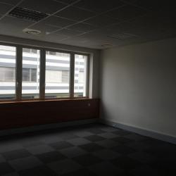 Location Bureau Toulouse 232,43 m²