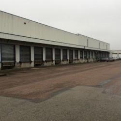 Location Local d'activités Longvic 1137 m²