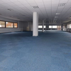 Location Local commercial Ampuis 960 m²
