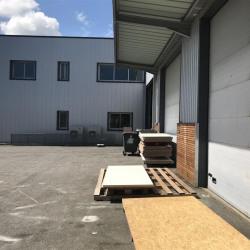 Location Local d'activités Beaupuy 1330 m²
