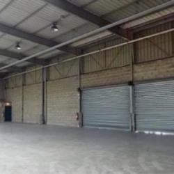 Location Entrepôt Lisses 140 m²