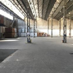 Location Local d'activités Marseille 3ème 1975 m²