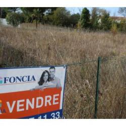 Vente Terrain Saint-Pierre-d'Oléron 0 m²