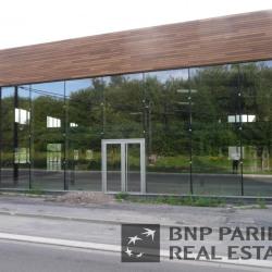 Location Bureau Tourcoing 230 m²