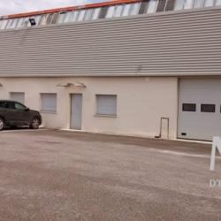 Location Local d'activités Neuville-sur-Saône (69250)