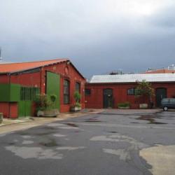 Location Local d'activités Saint-Denis (93200)